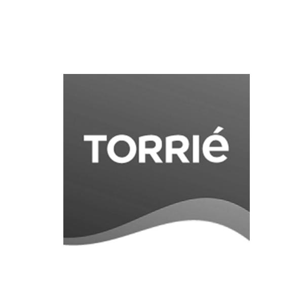 Torrie - Wave Solutions